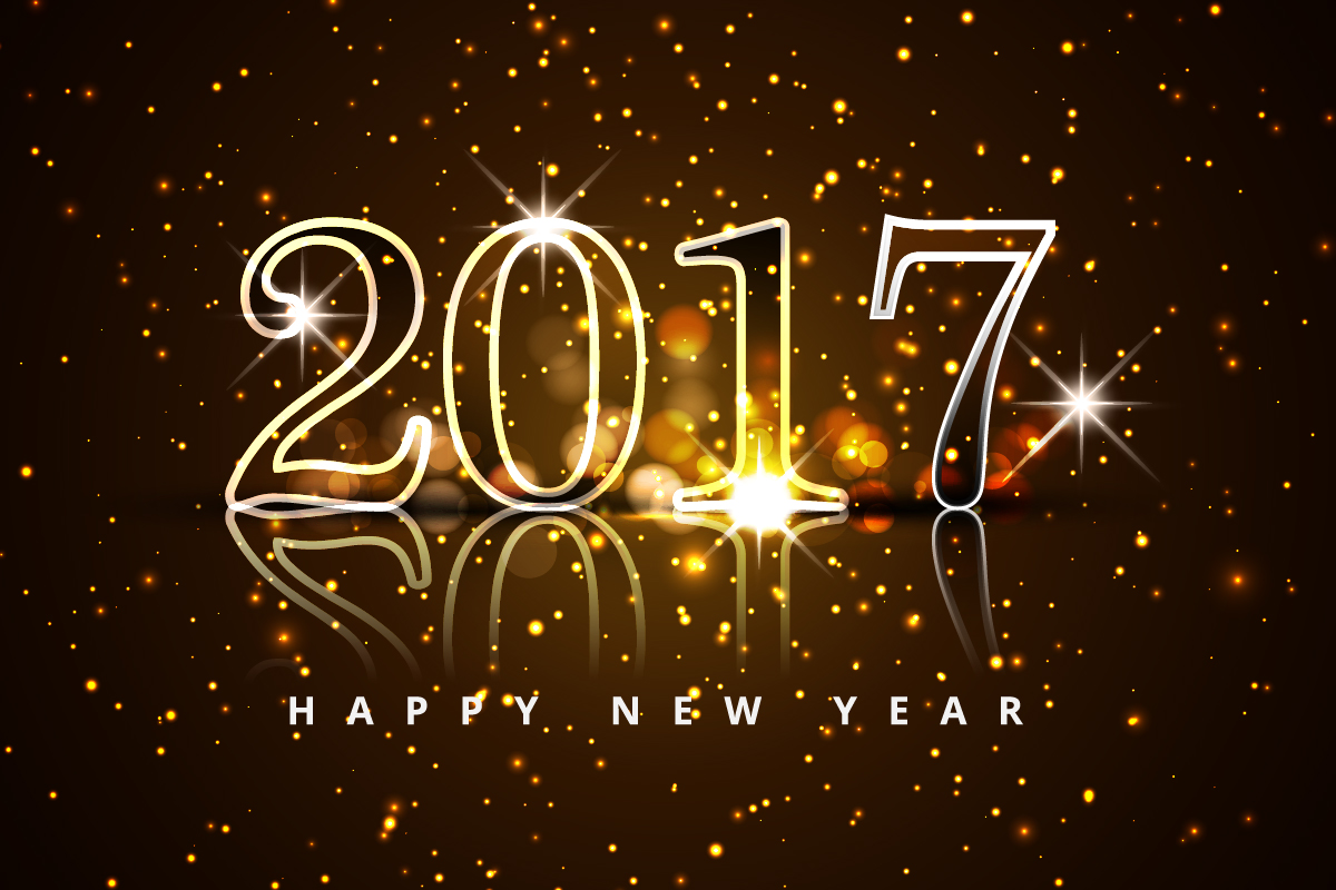 Image result for HAPPY NEW YEAR 2017