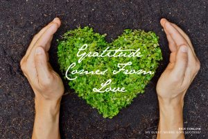 17 Memorable Quotes About Gratitude